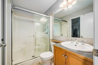 Photo 21: 484 Prestwick Circle SE in Calgary: McKenzie Towne Detached for sale : MLS®# A1101425