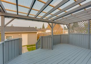 Photo 39: 205 RUNDLESON Place NE in Calgary: Rundle Detached for sale : MLS®# A1153804
