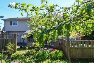 Photo 33: 2106 McKenzie Ave in : CV Comox (Town of) Full Duplex for sale (Comox Valley)  : MLS®# 874890