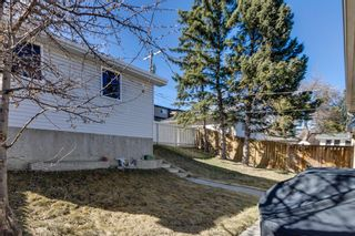 Photo 23: 7135 8 Street NW in Calgary: Huntington Hills Detached for sale : MLS®# A1093128