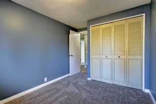 Photo 23: 7 PINEBROOK Place NE in Calgary: Pineridge Detached for sale : MLS®# C4221689