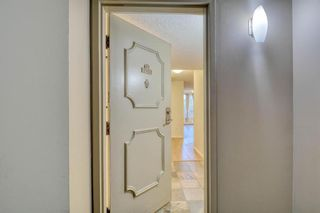 Photo 7: 201 2425 90 Avenue SW in Calgary: Palliser Apartment for sale : MLS®# A1052664