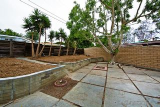 Photo 17: LA JOLLA House for rent : 3 bedrooms : 5425 Waverly Ave