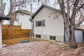 Photo 40: 312 Mt Aberdeen Close SE in Calgary: McKenzie Lake Detached for sale : MLS®# A1046407