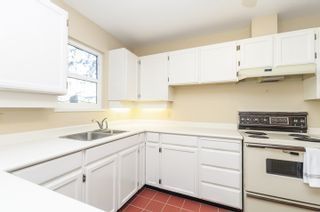 Photo 6: 2 3301 W 16 AVENUE in Vancouver: Kitsilano Townhouse for sale (Vancouver West)  : MLS®# R2050724