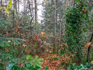 Photo 12: 755 Hobson Ave in COURTENAY: CV Courtenay East House for sale (Comox Valley)  : MLS®# 686151