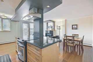 Photo 13: 405 1225 15 Avenue SW in Calgary: Beltline Apartment for sale : MLS®# A1100145