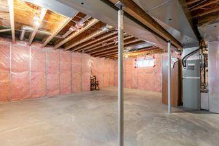 Photo 39: 36 BECKER Crescent: Fort Saskatchewan House for sale : MLS®# E4262998