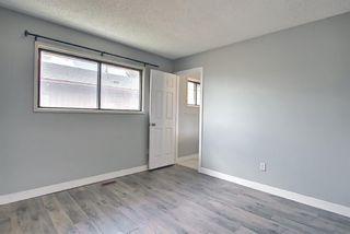 Photo 23: 455 Falconridge Crescent NE in Calgary: Falconridge Detached for sale : MLS®# A1103477