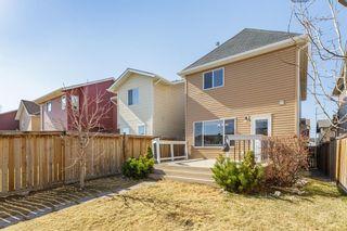 Photo 29: 27 Auburn Bay Manor SE in Calgary: Auburn Bay Detached for sale : MLS®# A1073937