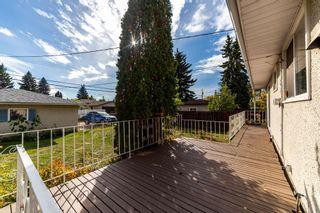 Photo 24: 11411 MALMO Road in Edmonton: Zone 15 House for sale : MLS®# E4266011