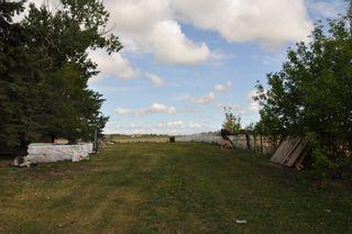 Photo 50: 56005 RR 254: Rural Sturgeon County House for sale : MLS®# E4259157