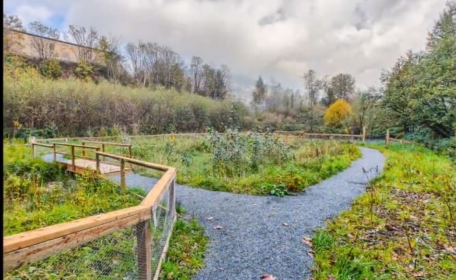 Photo 13: Photos: #209 2242 Whatcom Rd. in Abbotsford: Abbotsford East Condo for rent