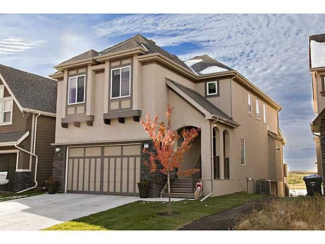 Main Photo: 141 MARQUIS Point SE in : Mahogany Residential Detached Single Family for sale (Calgary)  : MLS®# C3635651