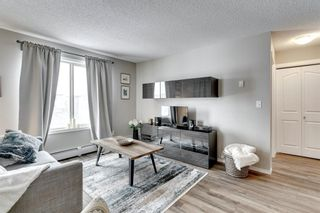 Photo 18: 4319 403 Mackenzie Way SW: Airdrie Apartment for sale : MLS®# A1067372
