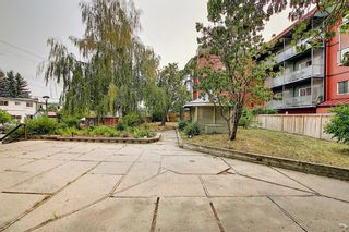 Photo 22: 119 333 Garry Crescent NE in Calgary: Greenview Apartment for sale : MLS®# A1139361