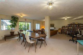 Photo 20: 304 3900 Shelbourne St in VICTORIA: SE Cedar Hill Condo for sale (Saanich East)  : MLS®# 768174