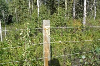 Photo 10: 6380 Dawsons Lane | Smithers BC