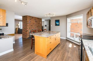 Photo 20: 21315 TWP RD 553: Rural Strathcona County House for sale : MLS®# E4233443