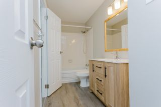 Photo 33: 31 2204 118 Street NW in Edmonton: Zone 16 Carriage for sale : MLS®# E4249147