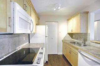 Photo 14: 4302 13045 6 Street SW in Calgary: Canyon Meadows Apartment for sale : MLS®# A1116316