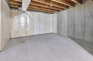Photo 28: 263 Cornerstone Avenue NE in Calgary: Cornerstone Semi Detached for sale : MLS®# A1069898