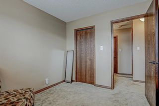 Photo 39: 87 Bermuda Close NW in Calgary: Beddington Heights Detached for sale : MLS®# A1073222