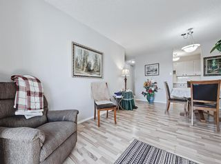 Photo 12: 2104 3115 51 Street SW in Calgary: Glenbrook Apartment for sale : MLS®# A1097152