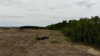 Photo 11: Viewmar Drive: Rural Ponoka County Land for sale : MLS®# C4288523