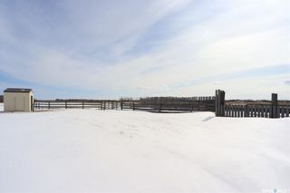 Photo 39: Henribourg Acreage in Henribourg: Residential for sale : MLS®# SK847200
