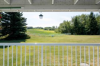 Photo 19: 23131 TWP RD 520: Rural Strathcona County House for sale : MLS®# E4261881