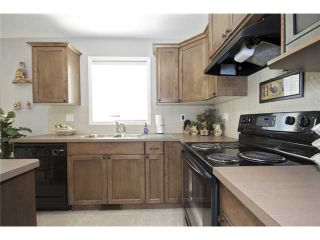 Photo 7: 449 LUXSTONE Place SW: Airdrie Residential Detached Single Family for sale : MLS®# C3542456
