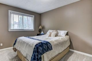 Photo 19: 184 Mountain Circle SE: Airdrie Detached for sale : MLS®# A1137347