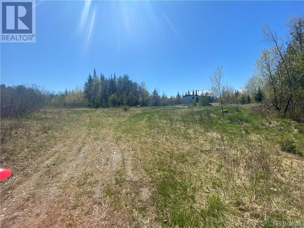 Main Photo: 74.62 Acres Route 127 in Bayside: Vacant Land for sale : MLS®# NB058351