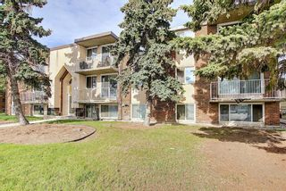 Main Photo: 201 1143 37 Street SW in Calgary: Rosscarrock Apartment for sale : MLS®# A1115394