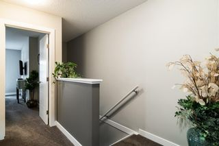 Photo 25: 374 Nolancrest Heights NW in Calgary: Nolan Hill Row/Townhouse for sale : MLS®# A1145723