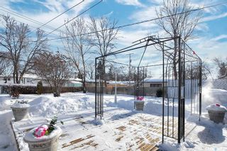 Photo 28: 11 Mathieu Crescent in Regina: Coronation Park Residential for sale : MLS®# SK840069