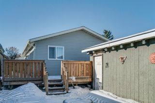 Photo 23: 10 Abalone Crescent NE in Calgary: Abbeydale Detached for sale : MLS®# A1072255