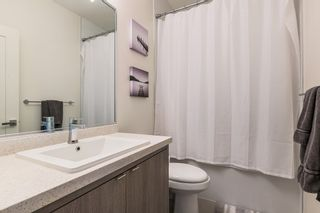 """Photo 12: 15 7811 209 Street in Langley: Willoughby Heights Townhouse for sale in """"EXCHANGE"""" : MLS®# R2174415"""