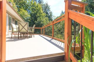 Photo 33: 4535 UDY Road in Abbotsford: Sumas Mountain House for sale : MLS®# R2101409