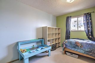 Photo 21: 23 Applecrest Court SE in Calgary: Applewood Park Detached for sale : MLS®# A1079523