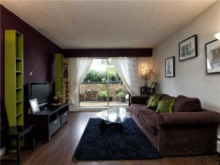 """Photo 1: 105 774 GREAT NORTHERN Way in Vancouver: Mount Pleasant VE Condo for sale in """"Pacific Terraces"""" (Vancouver East)  : MLS®# V953777"""