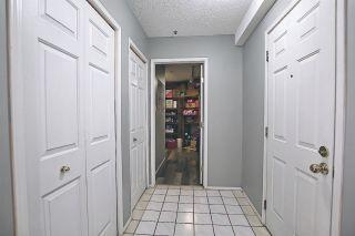 Photo 2: 303 9131 99 Street in Edmonton: Zone 15 Condo for sale : MLS®# E4238517