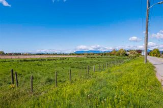 Photo 9: 17731 WESTMINSTER Highway in Richmond: East Richmond Agri-Business for sale : MLS®# C8038030