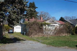 Photo 4: 1464 Bromley Pl in VICTORIA: SE Cedar Hill Land for sale (Saanich East)  : MLS®# 809481