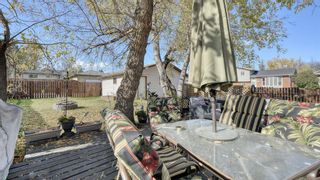 Photo 37: 347 Whiteside Road NE in Calgary: Whitehorn Detached for sale : MLS®# A1153718