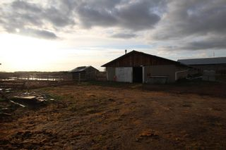 Photo 19: 57312 RGE RD 222: Rural Sturgeon County House for sale : MLS®# E4245586