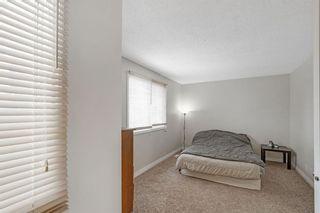 Photo 19: 21 Erin Ridge Road SE in Calgary: Erin Woods Detached for sale : MLS®# A1052761