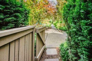 "Photo 9: 116 5655 210A Street in Langley: Salmon River Condo for sale in ""CORNERSTONE NORTH"" : MLS®# R2478779"