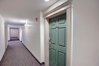 Photo 26: 314 1920 14 Avenue NE in Calgary: Mayland Heights Apartment for sale : MLS®# A1112494